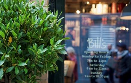Bill's - Borough Market -Inside 1